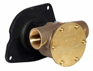 "1"" bronze pump, <b>80-size</b>, flange-mounted with BSP threaded ports"