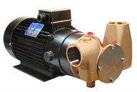 "Utility 80' 1½"" Self-Priming Flexible Impeller Pump 24 volt d.c."